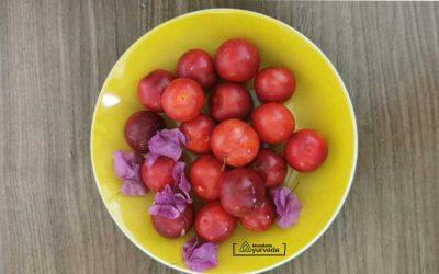 Ајурведата препорачува јадење овошје во првиот дел од денот особено во лето